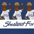 ShetlandForWirds